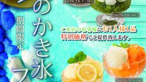 催し074(メルマガかき氷フェアAタイプ)